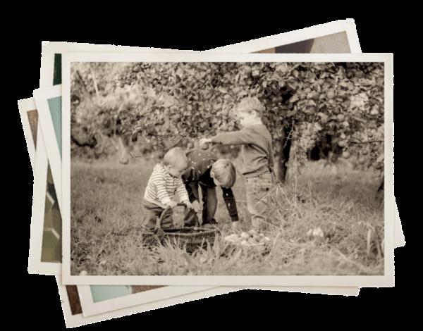 Enfance famille cidrerie kerné